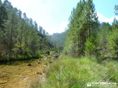 Hoz del Río Escabas - Serranía de Cuenca (Senderismo refrescante);rutas por sierra de madrid rutas